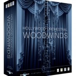 hollywoodorchestralwoodwinds